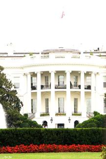 the white house and i know you know but i needed a title