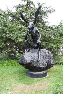 Alice's rabbit in Washington