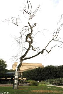 an art tree in Washington